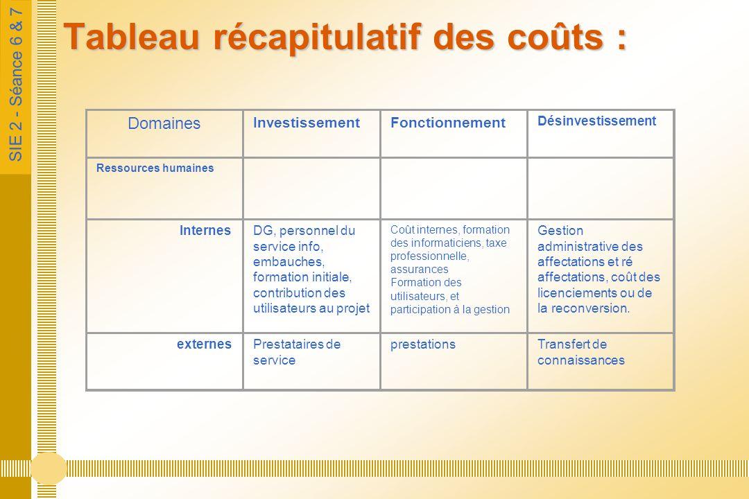 SIE 2 - Séance 6 & 7 Tableau récapitulatif des coûts : Domaines InvestissementFonctionnement Désinvestissement Ressources humaines InternesDG, personn