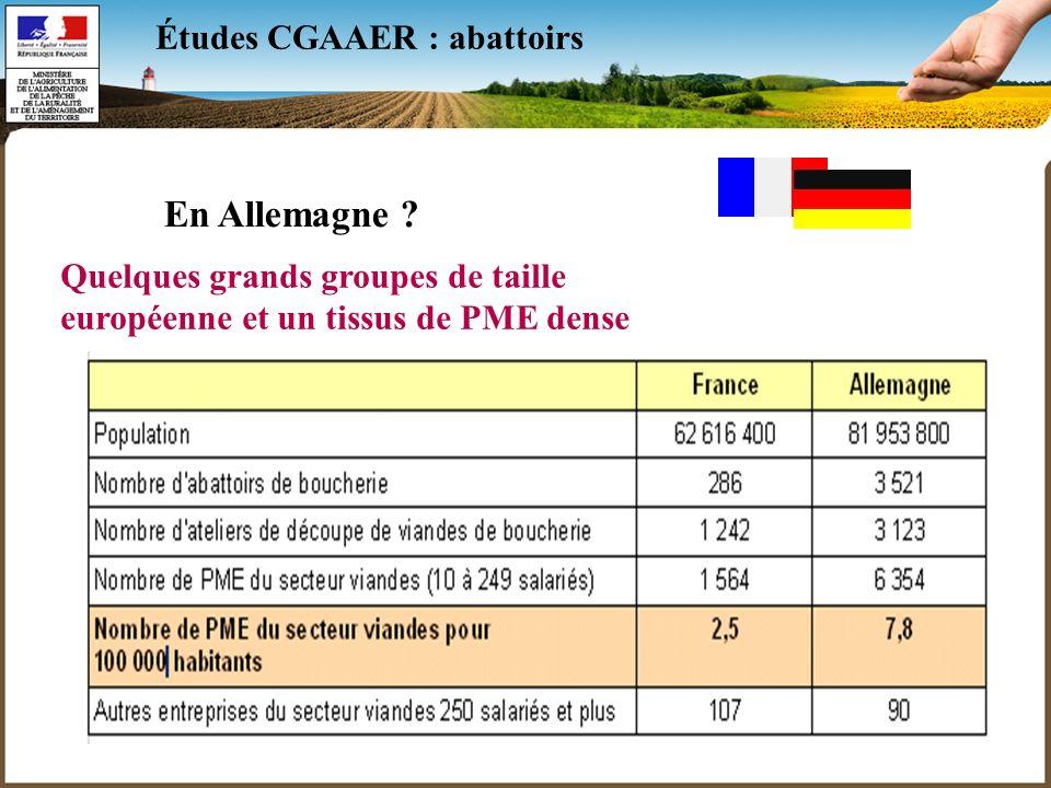 10 Études CGAAER : abattoirs En Allemagne ? Quelques grands groupes de taille européenne et un tissus de PME dense