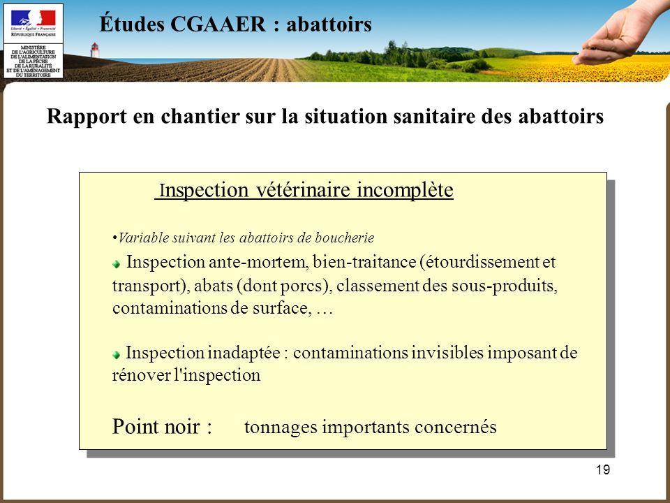 19 Études CGAAER : abattoirs Rapport en chantier sur la situation sanitaire des abattoirs I nspection vétérinaire incomplète Variable suivant les abat