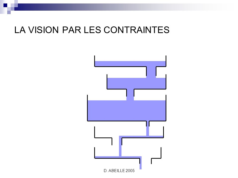 D. ABEILLE 2005 LA VISION PAR LES CONTRAINTES