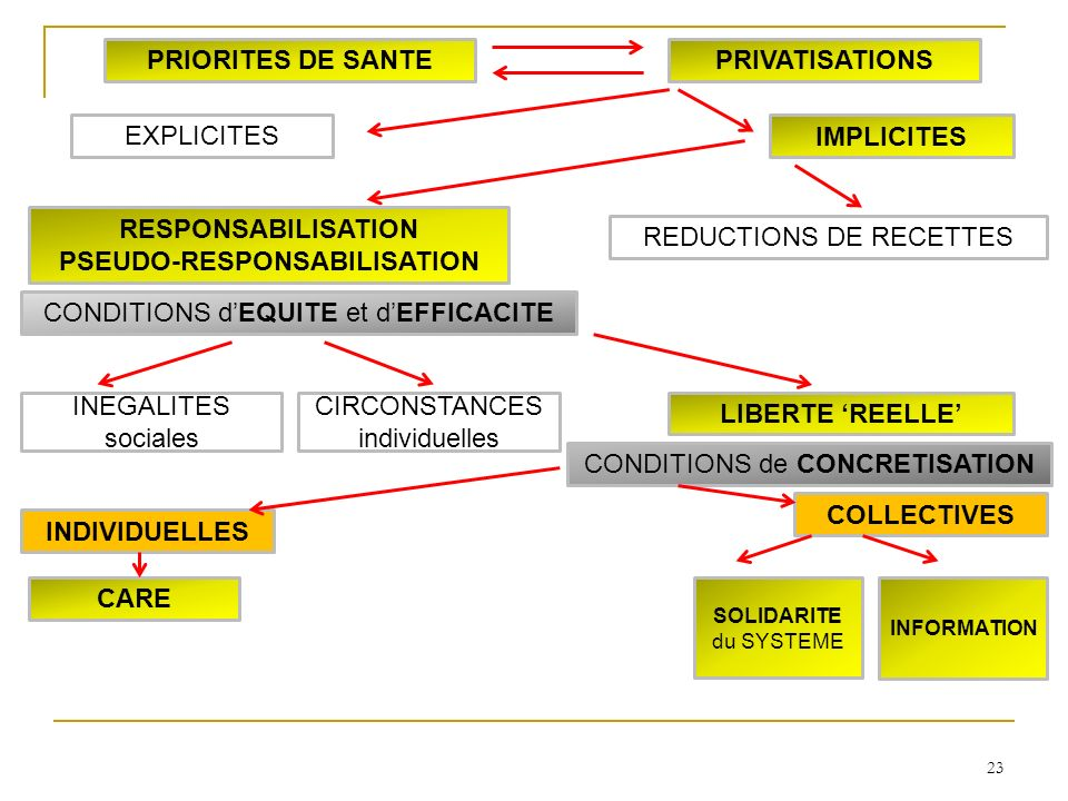 23 INDIVIDUELLES COLLECTIVES SOLIDARITE du SYSTEME INFORMATION CARE LIBERTE REELLE INEGALITES sociales CIRCONSTANCES individuelles RESPONSABILISATION