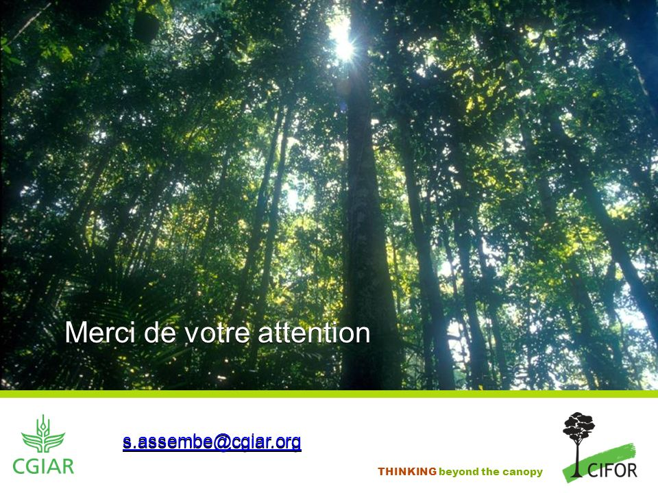 THINKING beyond the canopy Merci de votre attention s.assembe@cgiar.org