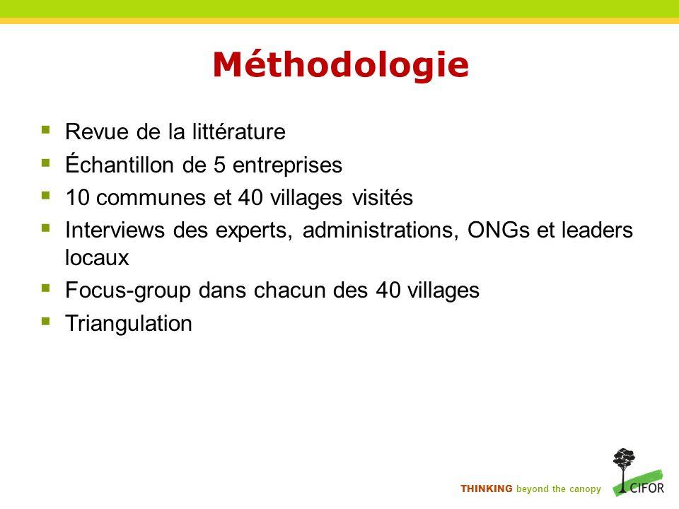 THINKING beyond the canopy Méthodologie Revue de la littérature Échantillon de 5 entreprises 10 communes et 40 villages visités Interviews des experts