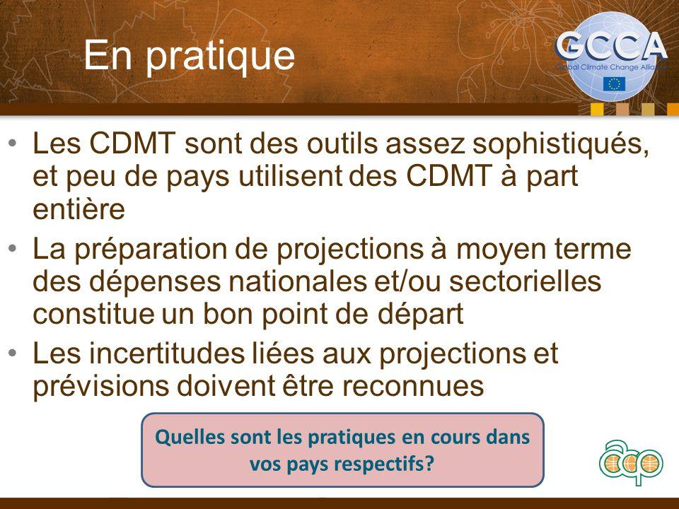 En pratique Les CDMT sont des outils assez sophistiqués, et peu de pays utilisent des CDMT à part entière La préparation de projections à moyen terme des dépenses nationales et/ou sectorielles constitue un bon point de départ Les incertitudes liées aux projections et prévisions doivent être reconnues Quelles sont les pratiques en cours dans vos pays respectifs?