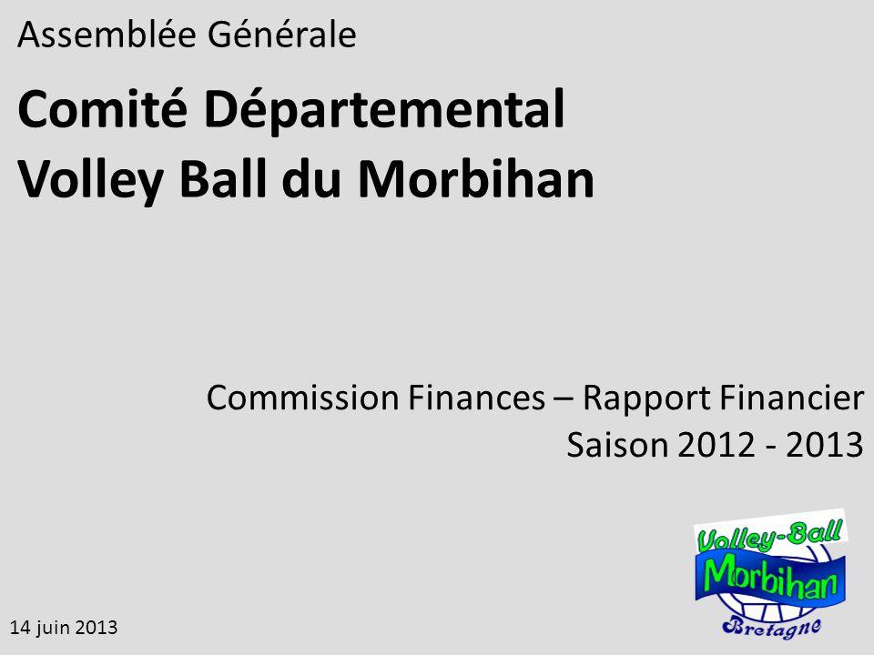 Assemblée Générale Comité Départemental Volley Ball du Morbihan 14 juin 2013 Commission Finances – Rapport Financier Saison 2012 - 2013