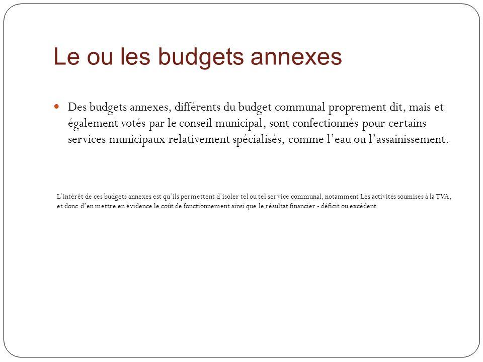 Le ou les budgets annexes Des budgets annexes, différents du budget communal proprement dit, mais et également votés par le conseil municipal, sont co