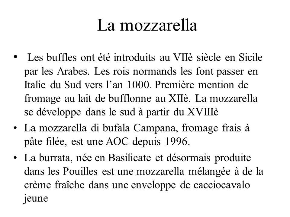 La mozzarella Les buffles ont été introduits au VIIè siècle en Sicile par les Arabes. Les rois normands les font passer en Italie du Sud vers lan 1000