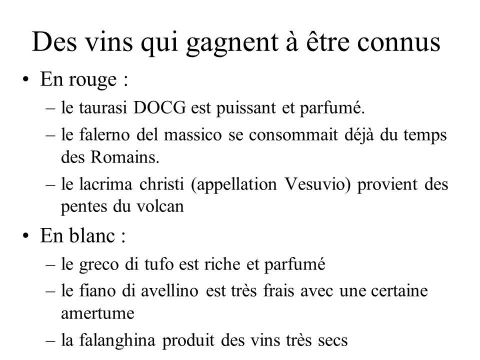 Des vins qui gagnent à être connus En rouge : –le taurasi DOCG est puissant et parfumé. –le falerno del massico se consommait déjà du temps des Romain