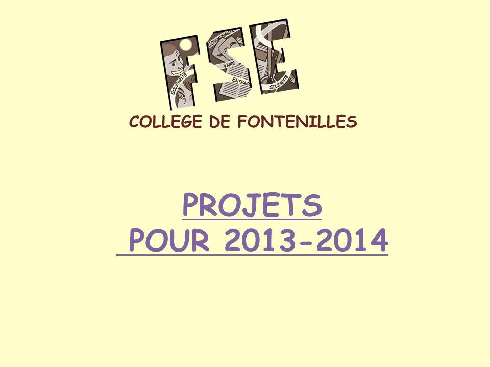 PROJETS POUR 2013-2014 COLLEGE DE FONTENILLES