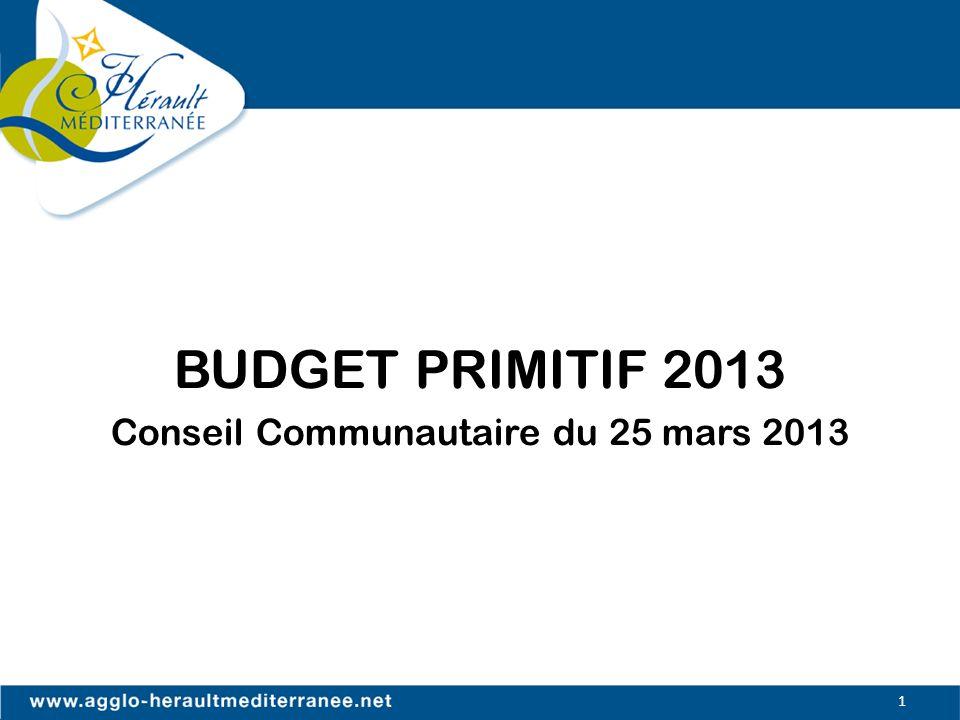 BUDGET PRIMITIF 2013 Conseil Communautaire du 25 mars 2013 1