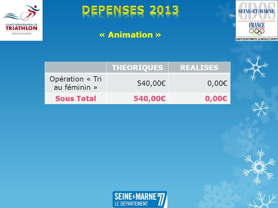 « Animation » THEORIQUESREALISES Opération « Tri au féminin » 540,000,00 Sous Total 540,000,00
