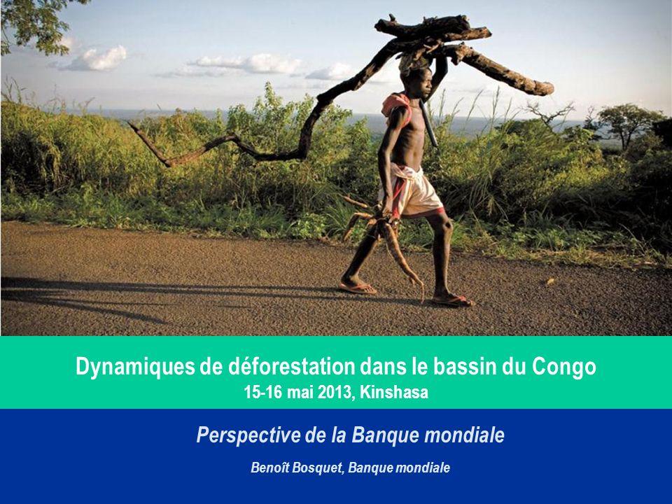 Perspective de la Banque mondiale Benoît Bosquet, Banque mondiale Dynamiques de déforestation dans le bassin du Congo 15-16 mai 2013, Kinshasa