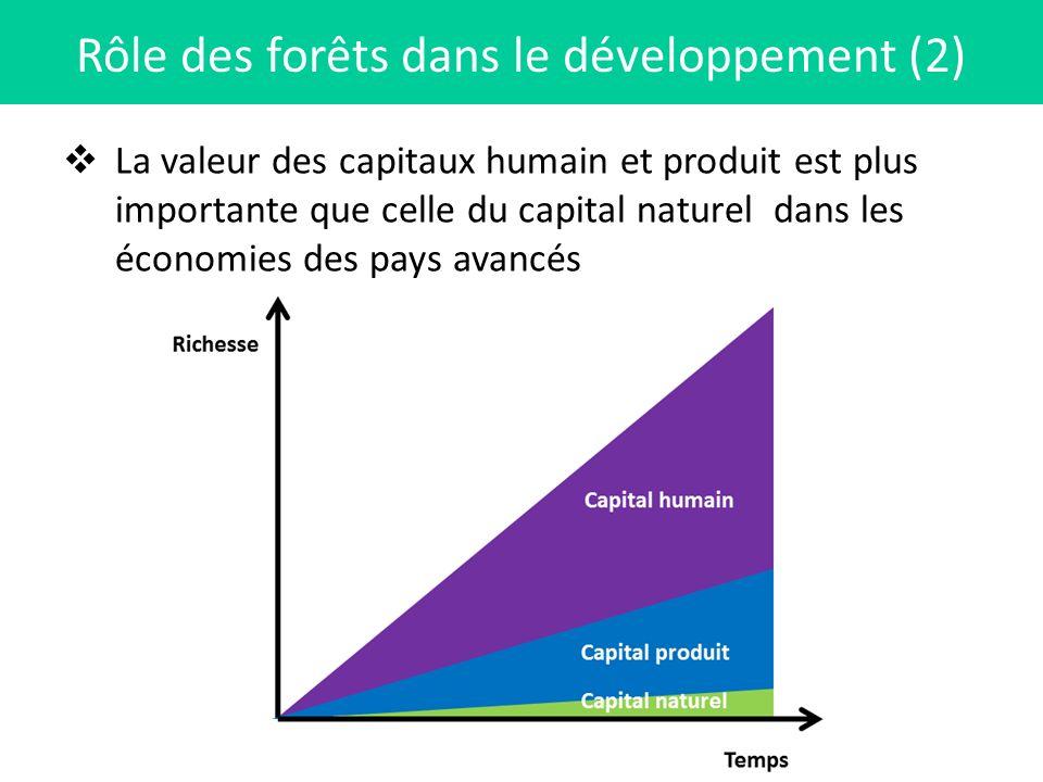 La valeur des capitaux humain et produit est plus importante que celle du capital naturel dans les économies des pays avancés Rôle des forêts dans le