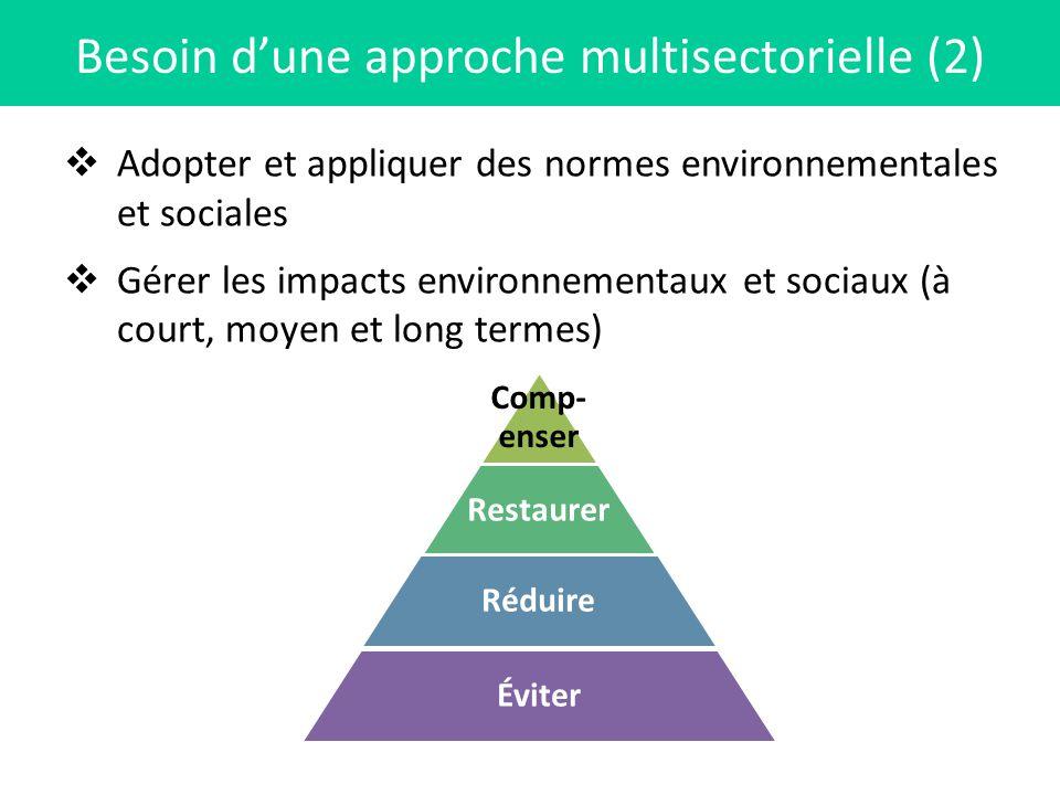 Adopter et appliquer des normes environnementales et sociales Gérer les impacts environnementaux et sociaux (à court, moyen et long termes) Besoin dun
