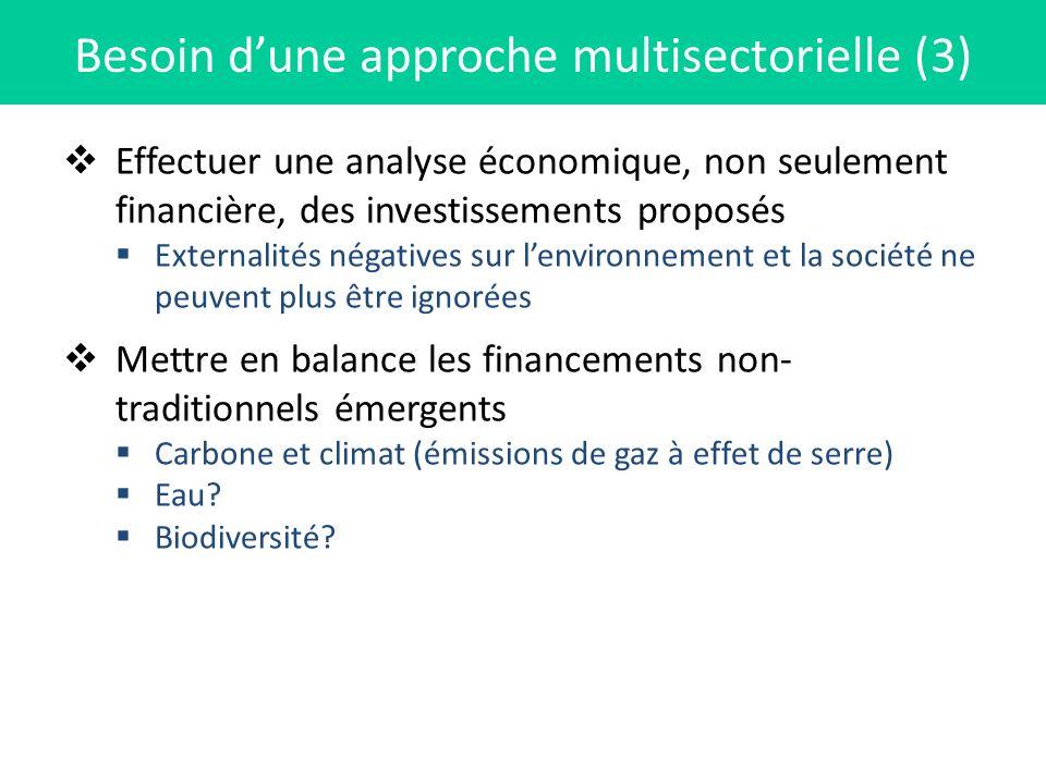 Effectuer une analyse économique, non seulement financière, des investissements proposés Externalités négatives sur lenvironnement et la société ne pe