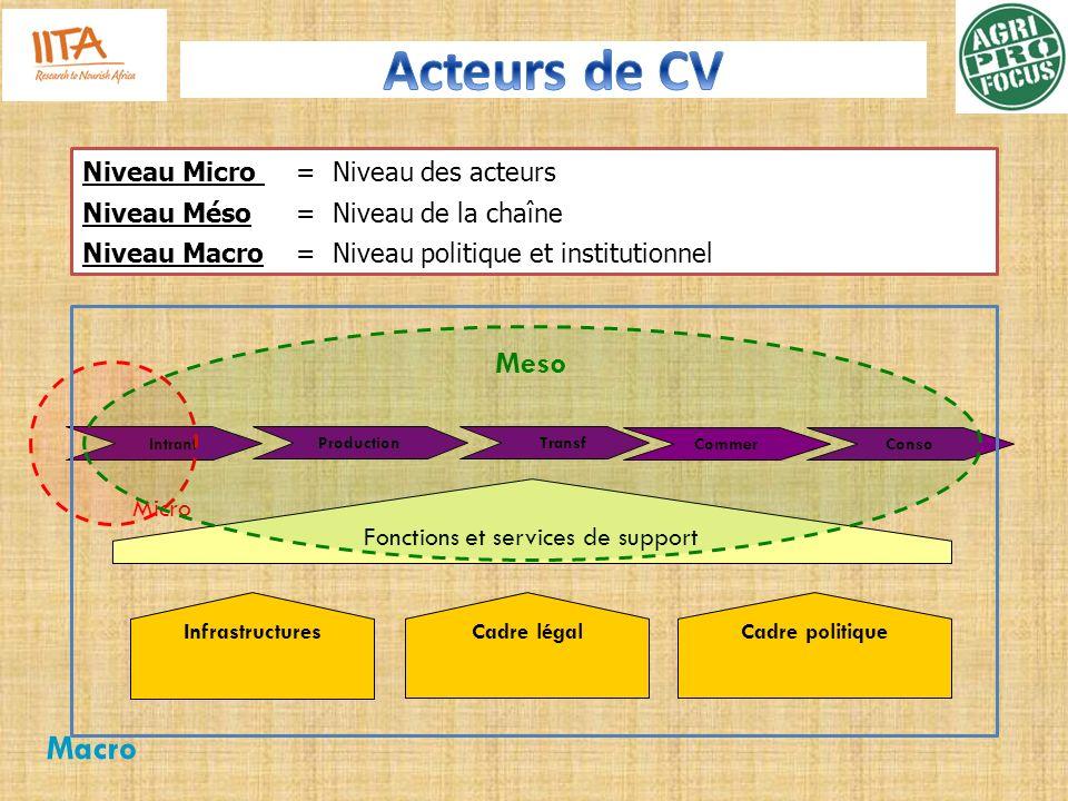Intrant Production Conso Transf Fonctions et services de support Infrastructures Cadre légal Cadre politique Micro Meso Macro Niveau Micro = Niveau de
