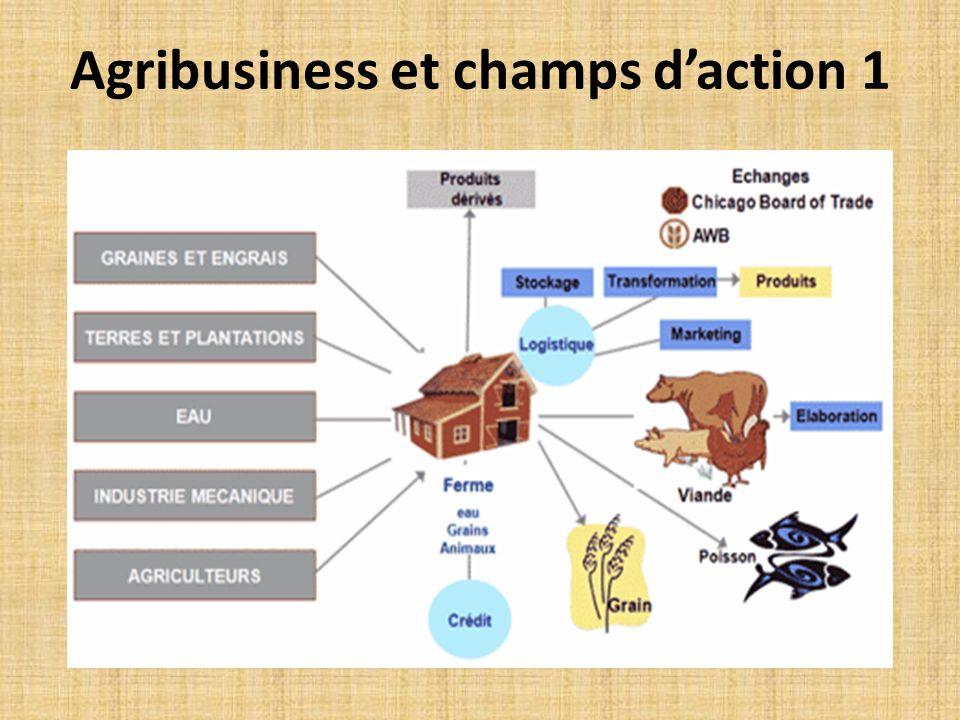 Cinq (5) catégories dacteurs: 1.Fournisseurs dintrants 2.Producteurs 3.Transformateurs 4.Commerçants 5.Consommateurs