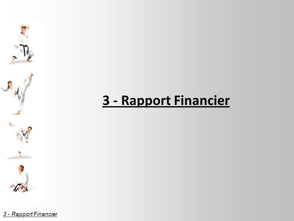 3 - Rapport Financier