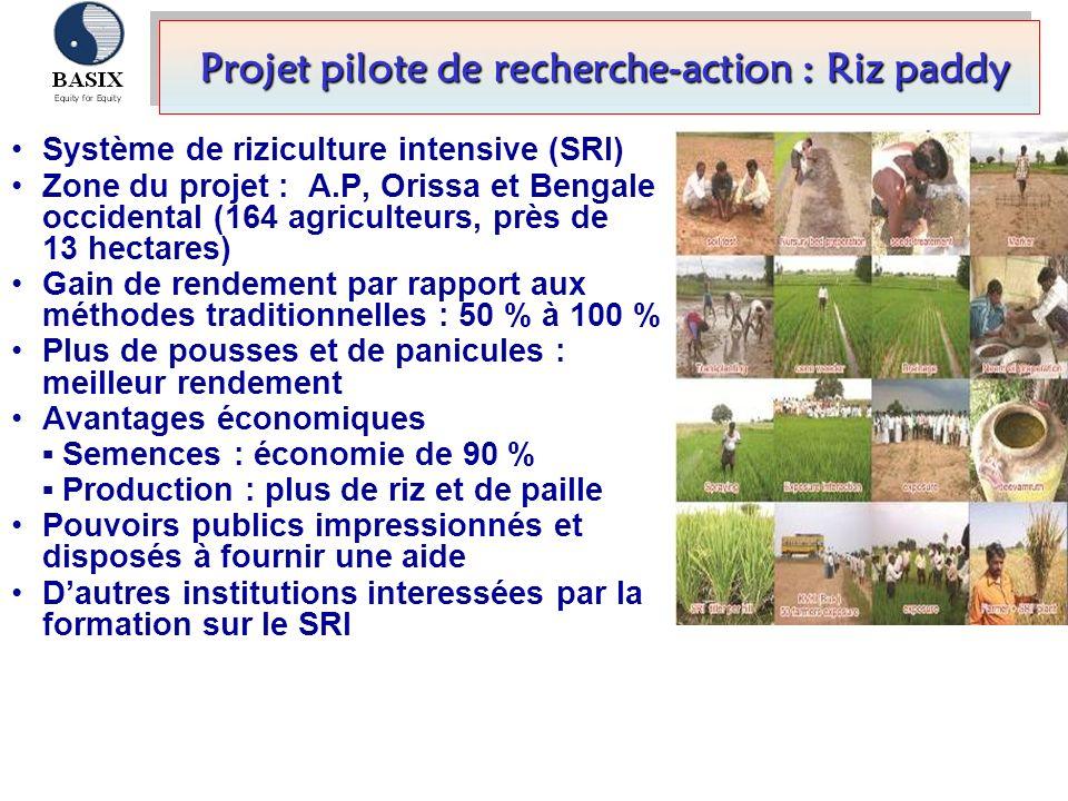 Système de riziculture intensive (SRI) Zone du projet : A.P, Orissa et Bengale occidental (164 agriculteurs, près de 13 hectares) Gain de rendement pa