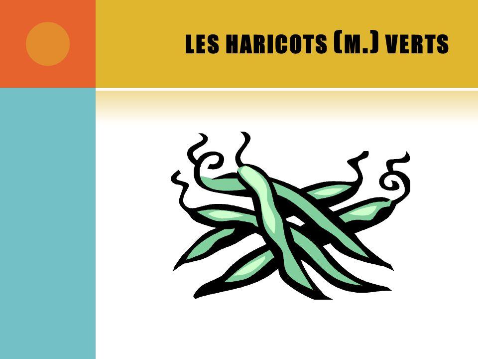 LES HARICOTS ( M.) VERTS