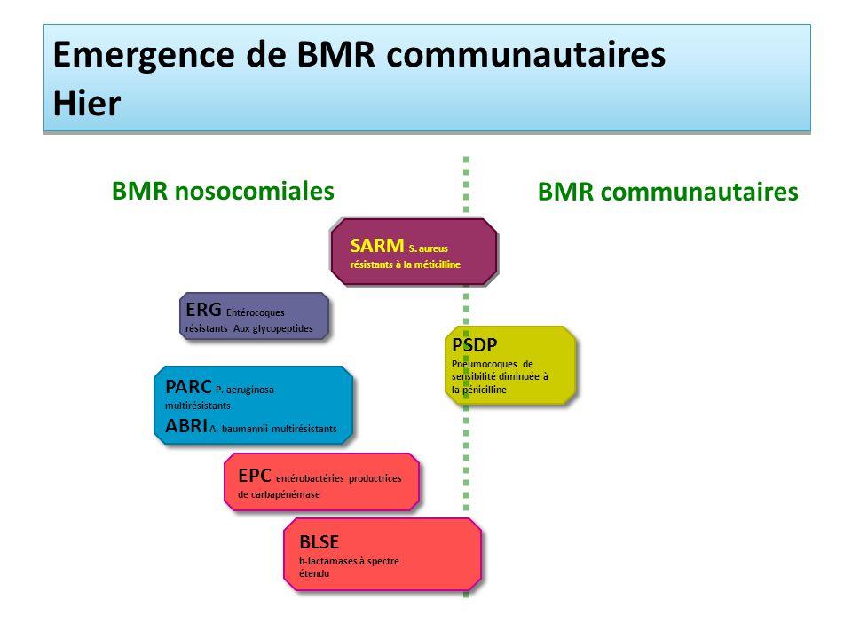 ERG Entérocoques résistants Aux glycopeptides PSDP Pneumocoques de sensibilité diminuée à la pénicilline PARC P. aeruginosa multirésistants ABRI A. ba