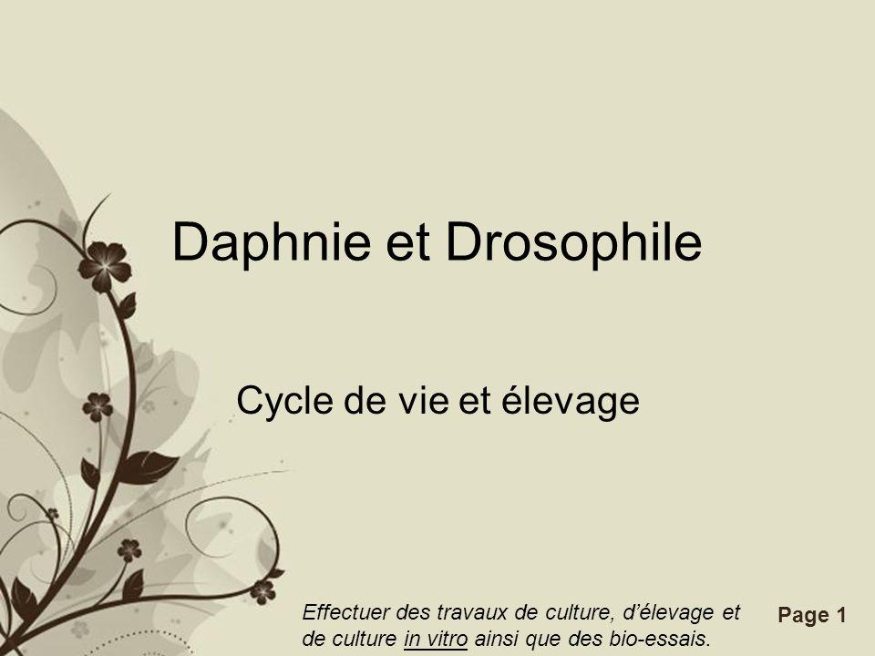 Free Powerpoint TemplatesPage 1 Daphnie et Drosophile Cycle de vie et élevage Effectuer des travaux de culture, délevage et de culture in vitro ainsi