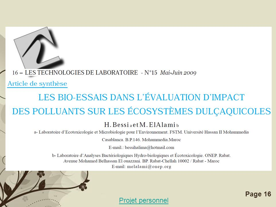 Free Powerpoint TemplatesPage 16 Projet personnel