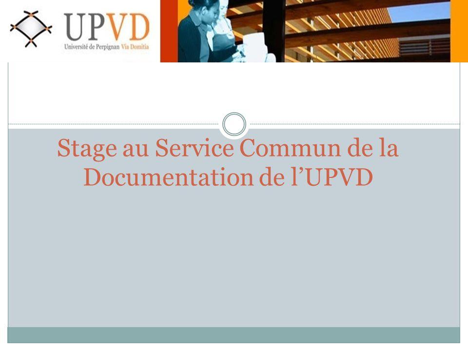 Stage au Service Commun de la Documentation de lUPVD