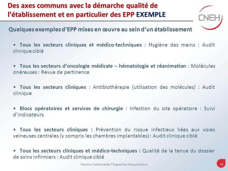 Centre Nationalde lExpertise Hospitalière 42 Des axes communs avec la démarche qualité de létablissement et en particulier des EPP EXEMPLE Quelques ex