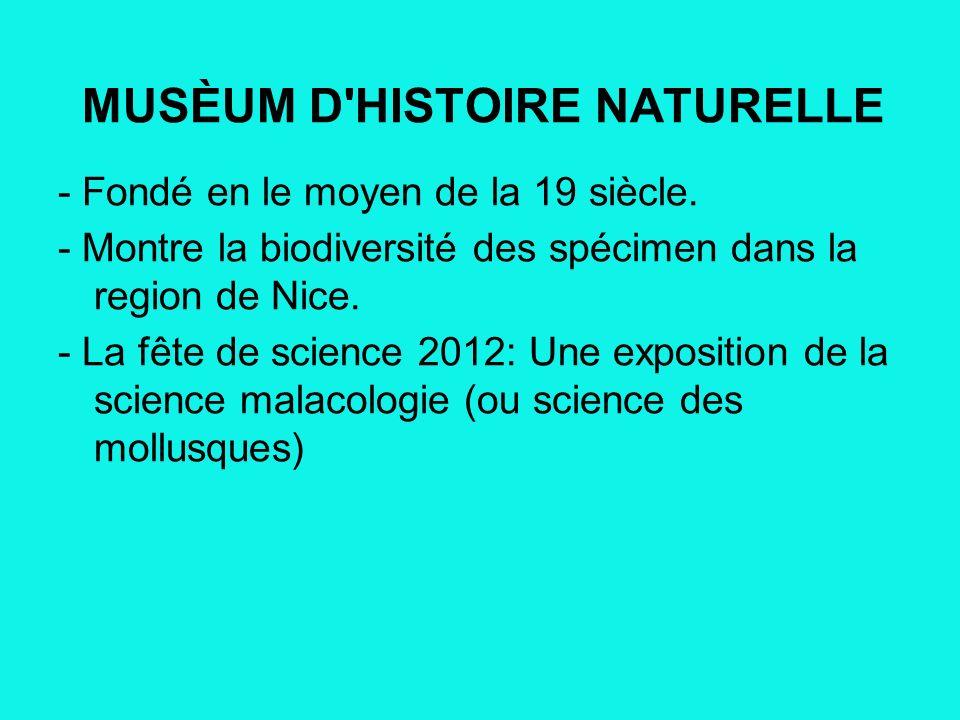 MUSÈUM D HISTOIRE NATURELLE - Fondé en le moyen de la 19 siècle.