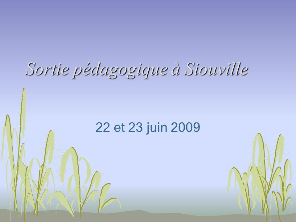 Sortie pédagogique à Siouville 22 et 23 juin 2009