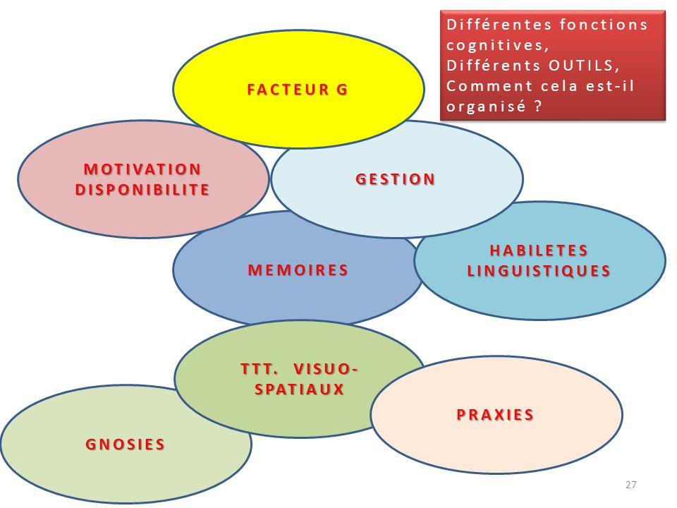 MEMOIRES MOTIVATION DISPONIBILITE GNOSIES HABILETESLINGUISTIQUES GESTION FACTEUR G TTT. VISUO- SPATIAUX PRAXIES 27 Différentes fonctions cognitives, D
