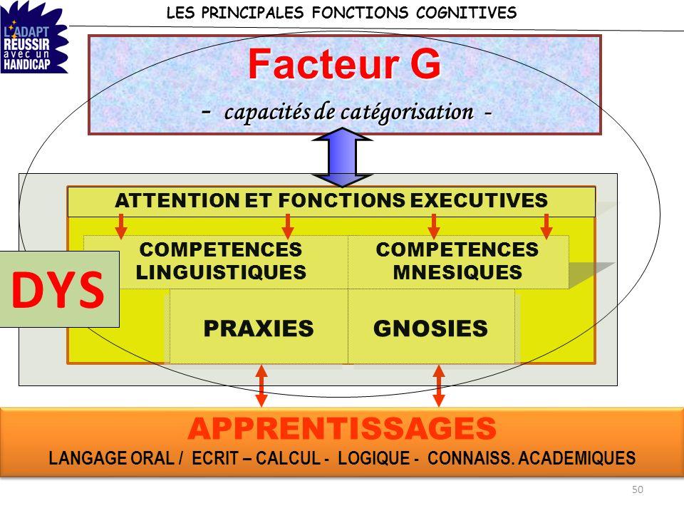 LES PRINCIPALES FONCTIONS COGNITIVES ATTENTION ET FONCTIONS EXECUTIVES COMPETENCES LINGUISTIQUES COMPETENCES MNESIQUES PRAXIES GNOSIES APPRENTISSAGES