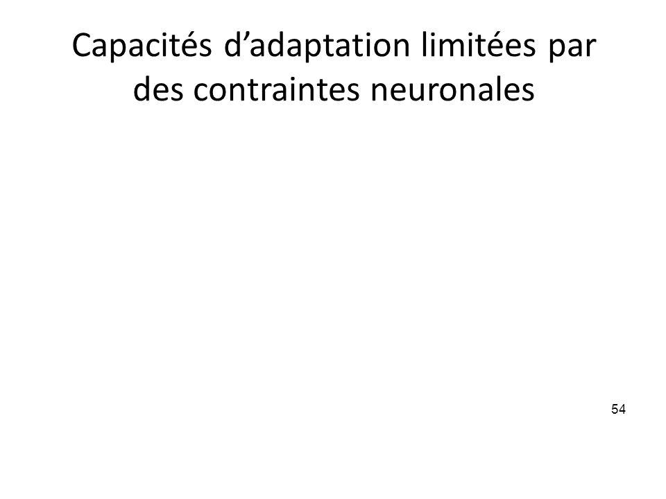 Capacités dadaptation limitées par des contraintes neuronales 54