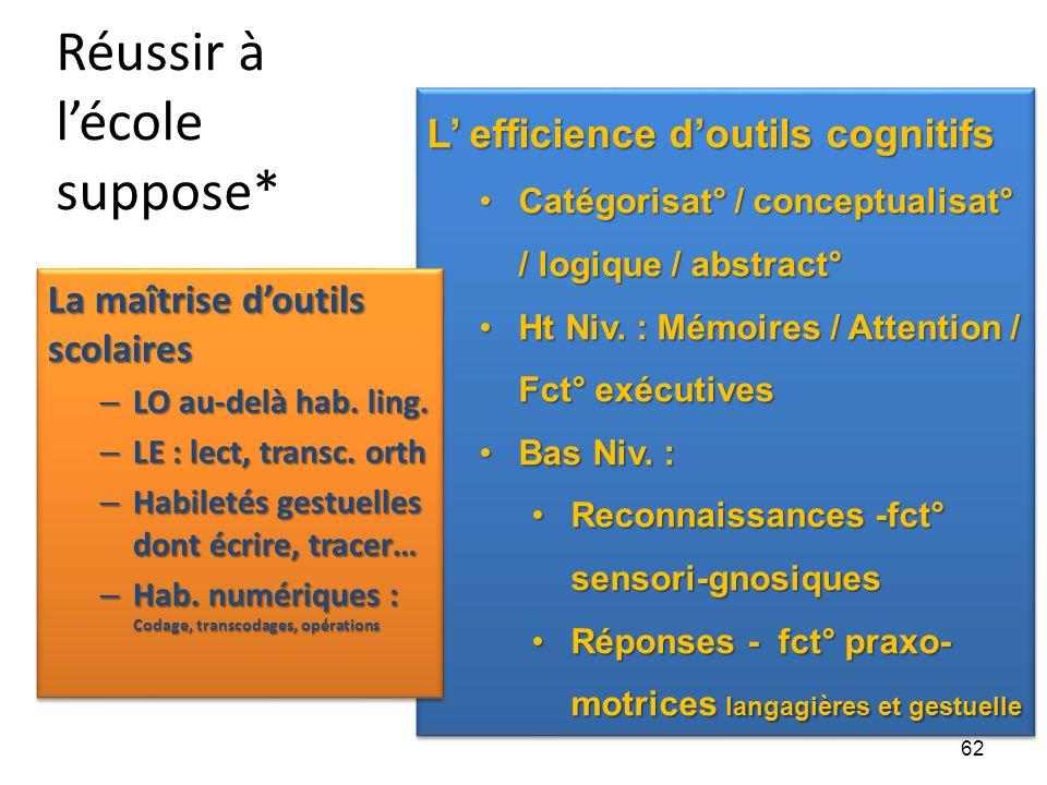 Réussir à lécole suppose* L efficience doutils cognitifs Catégorisat° / conceptualisat° / logique / abstract°Catégorisat° / conceptualisat° / logique