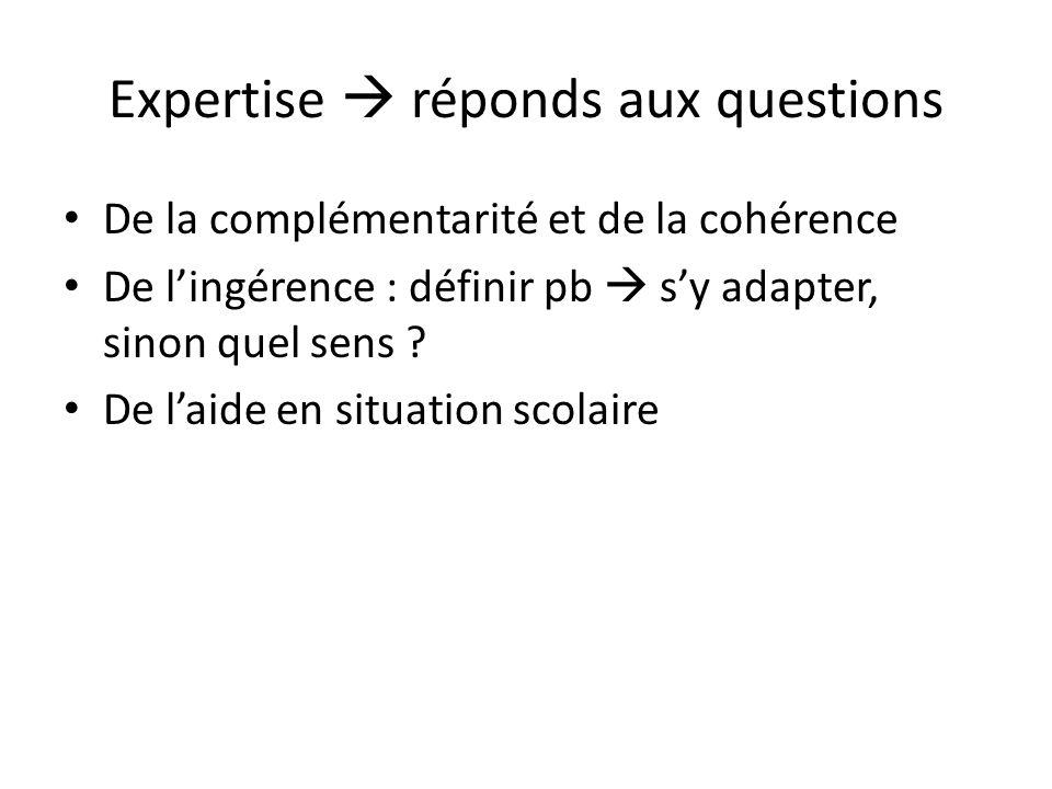 Expertise réponds aux questions De la complémentarité et de la cohérence De lingérence : définir pb sy adapter, sinon quel sens ? De laide en situatio