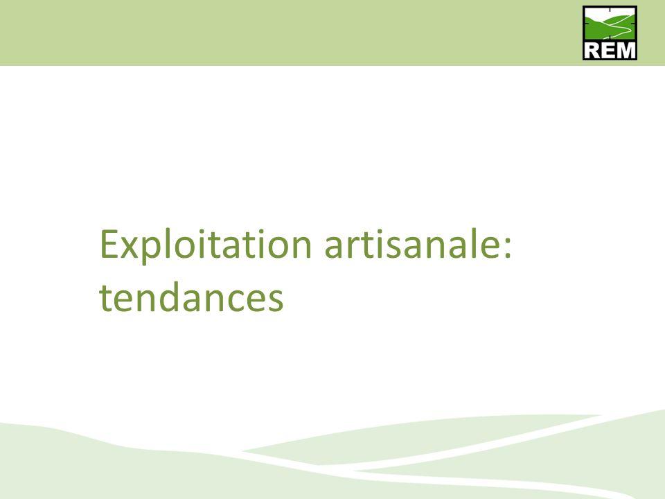 Exploitation artisanale: tendances