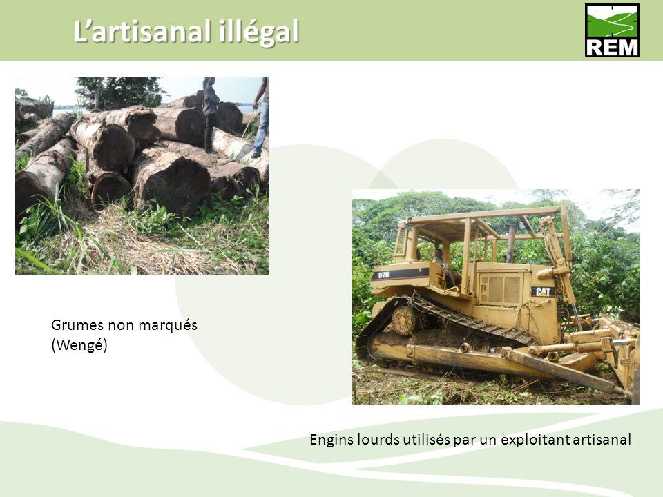 Lartisanal illégal Grumes non marqués (Wengé) Engins lourds utilisés par un exploitant artisanal