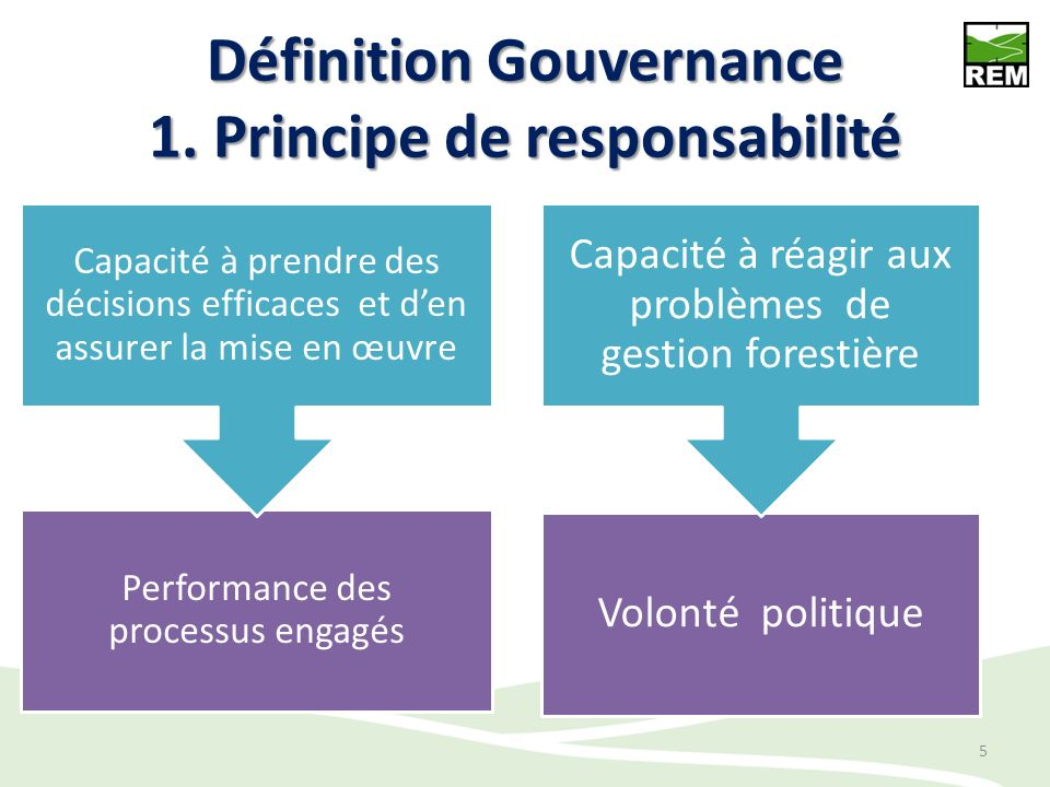 Définition Gouvernance 1. Principe de responsabilité Performance des processus engagés Capacité à prendre des décisions efficaces et den assurer la mi