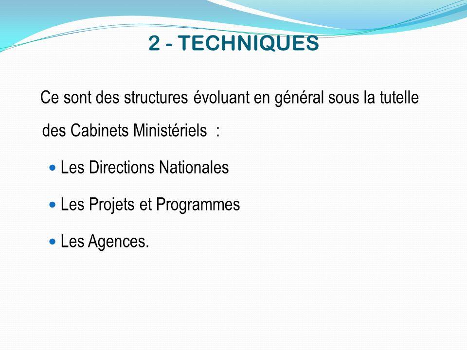 2 - TECHNIQUES Ce sont des structures évoluant en général sous la tutelle des Cabinets Ministériels : Les Directions Nationales Les Projets et Program