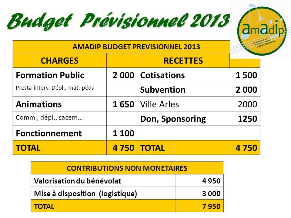Budget Prévisionnel 2013 AMADIP BUDGET PREVISIONNEL 2013 CHARGESRECETTES Formation Public2 000 Cotisations 1 500 Presta interv. Dépl., mat. péda Subve