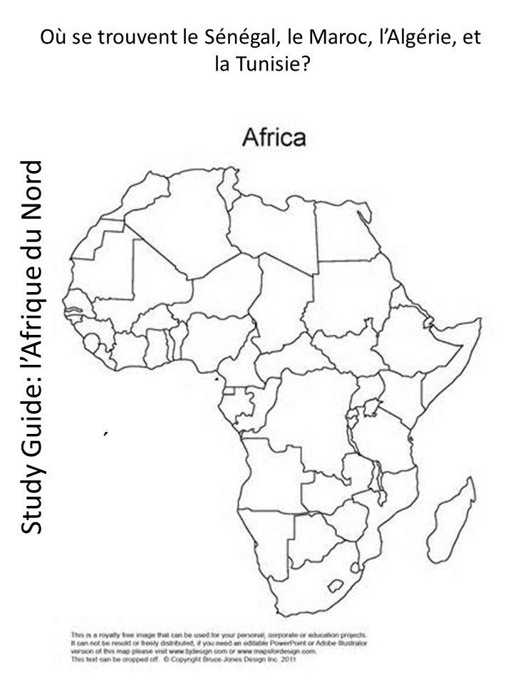 Study Guide: lAfrique du Nord Où se trouvent le Sénégal, le Maroc, lAlgérie, et la Tunisie?