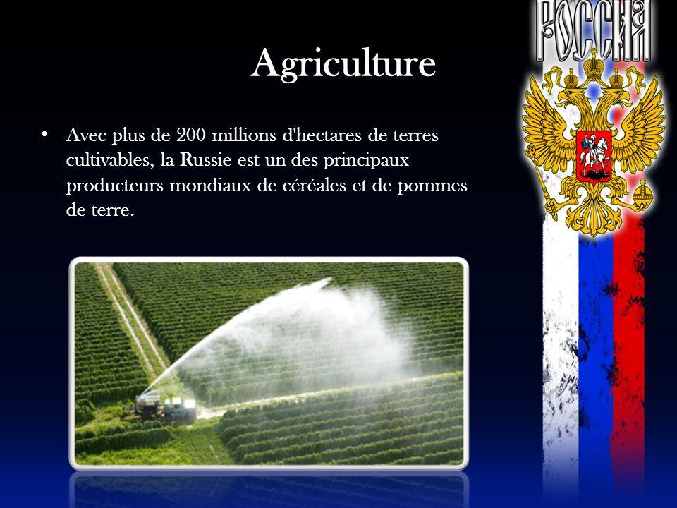 Agriculture Avec plus de 200 millions d'hectares de terres cultivables, la Russie est un des principaux producteurs mondiaux de céréales et de pommes