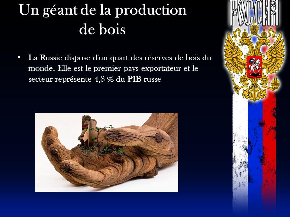 Un géant de la production de bois La Russie dispose d'un quart des réserves de bois du monde. Elle est le premier pays exportateur et le secteur repré