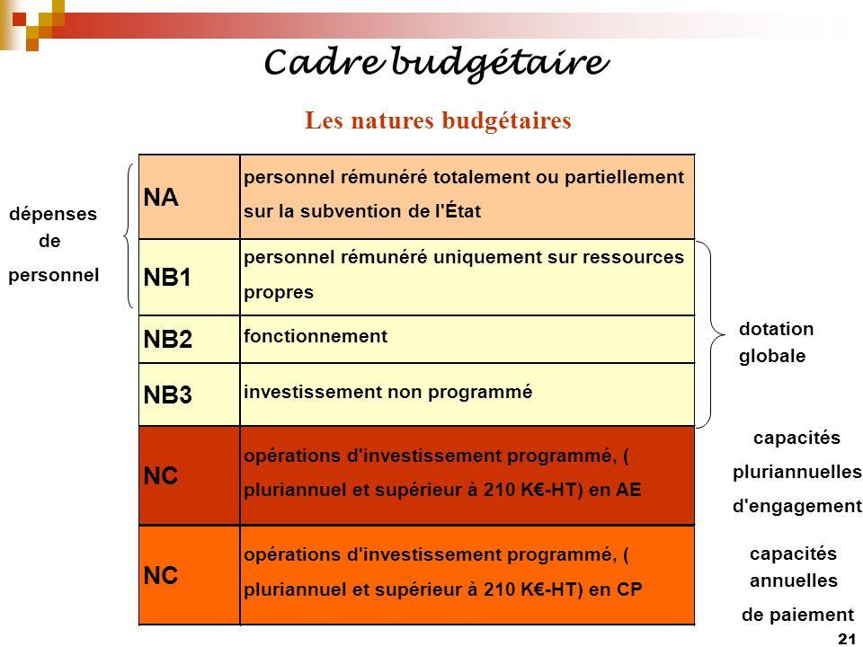 21 Cadre budgétaire Les natures budgétaires NA personnel rémunéré totalement ou partiellement sur la subvention de l'État NB1 personnel rémunéré uniqu