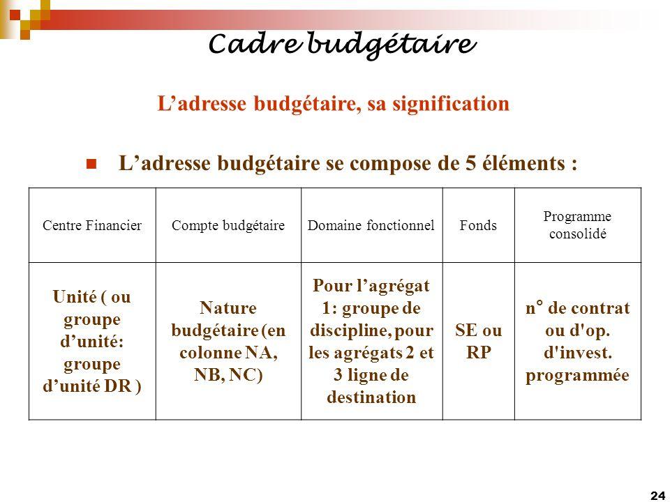 24 Ladresse budgétaire se compose de 5 éléments : Centre FinancierCompte budgétaireDomaine fonctionnelFonds Programme consolidé Unité ( ou groupe duni
