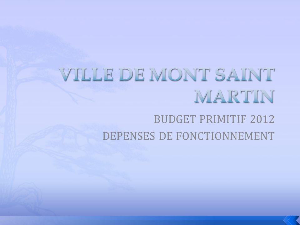 BUDGET PRIMITIF 2012 DEPENSES DE FONCTIONNEMENT