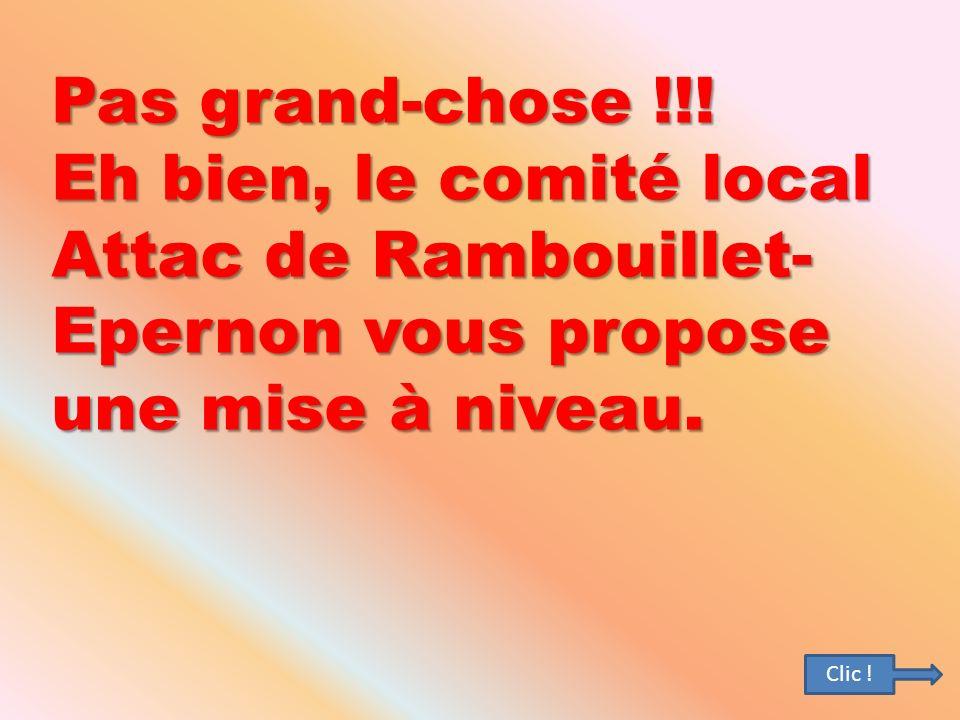 Pas grand-chose !!! Eh bien, le comité local Attac de Rambouillet- Epernon vous propose une mise à niveau. Clic !