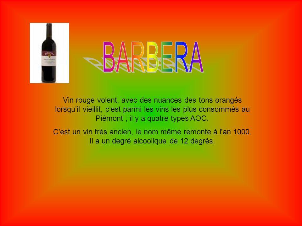 Le Barolo est un vin qui a une tradition de presque deux siècles.