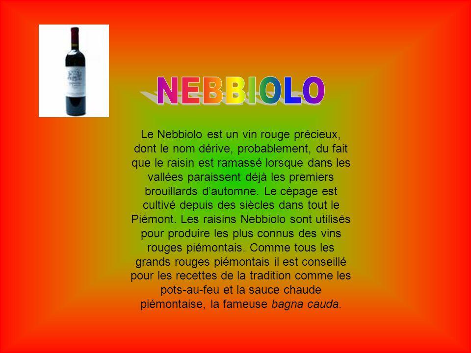 Le Nebbiolo est un vin rouge précieux, dont le nom dérive, probablement, du fait que le raisin est ramassé lorsque dans les vallées paraissent déjà le
